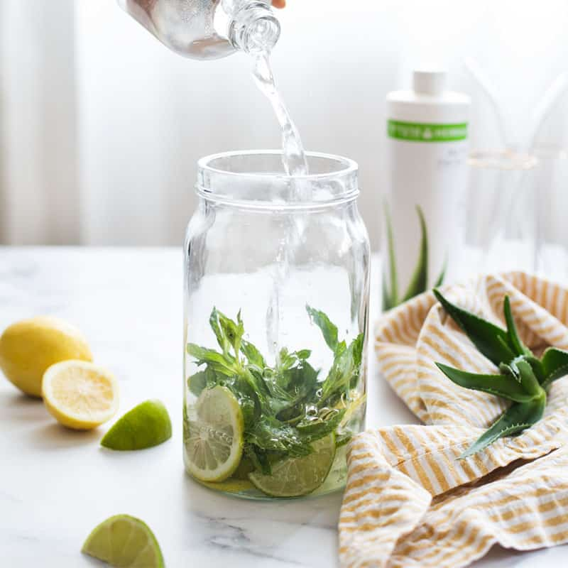 אלוורה לשתיה: רכז להכנת משקה אלוורה צמחי